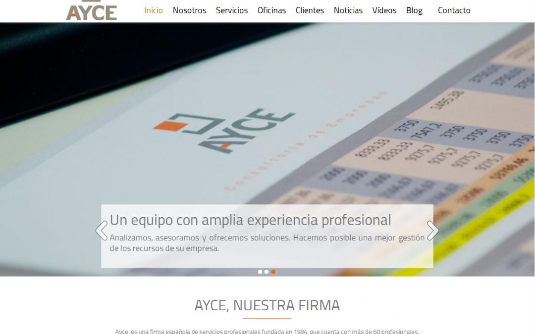 AYCE Consultores